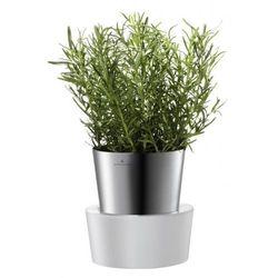 Samopodlewająca się doniczka na zioła  herbs od producenta Auerhahn