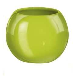 kubek na szczoteczkę do zębów power zielony marki Kleine wolke