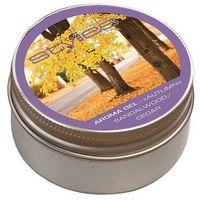 Airnaturel  żel zapachowy bio stylies aroma - jesień