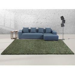 Dywan zielony - 300x400 cm - Shaggy - poliester - OREN
