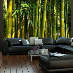 Fototapeta azjatycki las bambusowy 100403-10 marki Murando
