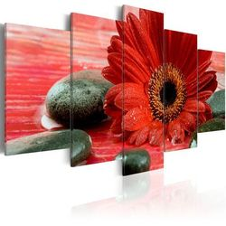 Obraz - Gerbera i kamienie Zen