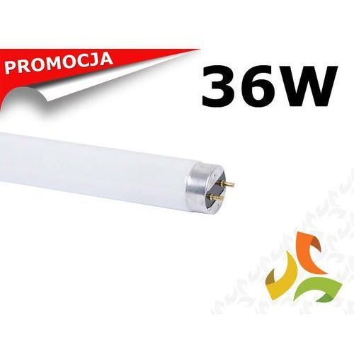 Świetlówka 36W/840 T8 liniowa trójpasmowa HYUNDAI - sprawdź w MEZOKO.COM
