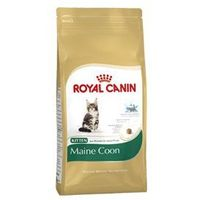 Royal canin kitten maine coon 2 kg marki Royal canin feline breed - karmy bytowe dla kotów