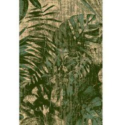 Agnella Dywan basic jungle ciemny zielony 80x150