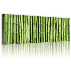 Obraz - Bambusowa ściana