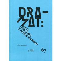 Dramat Między literaturą a przedstawieniem (9788376383507)