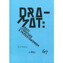 Dramat Między literaturą a przedstawieniem, pozycja wydawnicza
