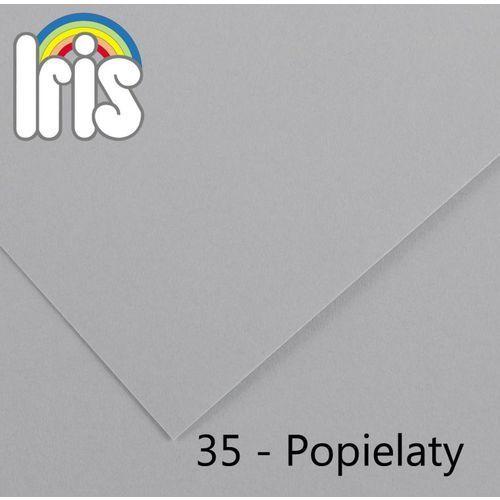 Brystol Canson Iris A3/185g popielaty 50ark. - produkt z kategorii- papier i płótna malarskie