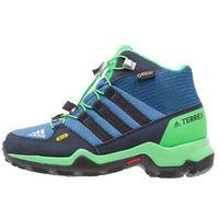 adidas Performance TERREX GTX Buty trekkingowe core blue/core black/energy green, kolor niebieski