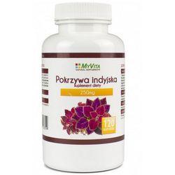 Pokrzywa Indyjska standaryzowany ekstrakt 250mg (MyVita) 120 kaps. - sprawdź w wybranym sklepie