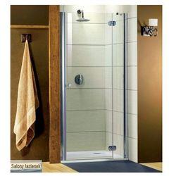 Drzwi prysznicowe 100 Torrenta DWJ Radaway (32020-01-10) - produkt z kategorii- Drzwi prysznicowe