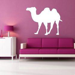 Wally - piękno dekoracji Tablica suchościeralna wielbłąd 140