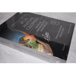 Atlas anatomii człowieka Nettera Angielskie mianownictwo anatomiczne, książka z ISBN: 9788365195074