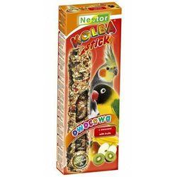 Nestor Kolba Papuga średnia owocowa (pokarm dla ptaków)