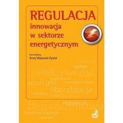 Regulacja - innowacja w sektorze energetycznym, pozycja wydawnicza