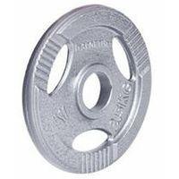 Obciążenie stalowe inSPORTline Hamerton 2,5 kg - 2,5 kg