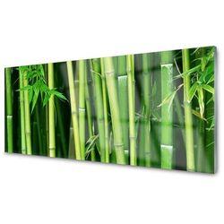 Obraz Akrylowy Las Bambusowy Bambus Natura