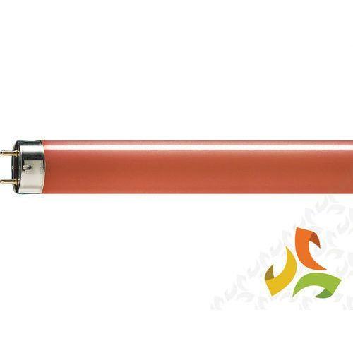 Świetlówka liniowa 36W/15 TL-D Czrewona G13,PHILIPS - oferta [a574d140436f7260]