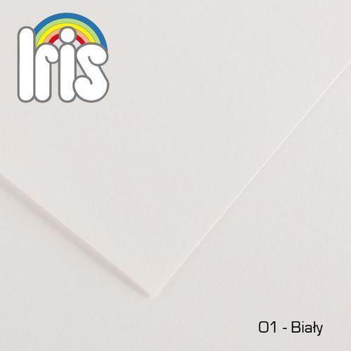 Brystol Canson Iris B1/240g biały 25ark. (płótno malarskie)