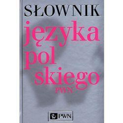 Słownik języka polskiego PWN+CD, pozycja wydawnicza