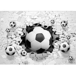 Fototapeta piłka nożna 3383 marki Consalnet