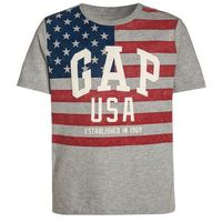 GAP CITY FLAG Tshirt z nadrukiem grey heather, 455123