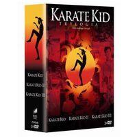Karate kid - Trylogia (DVD) - John G. Avildsen (5903570145537)