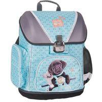Tornister szkolny Studio Pets PEF-520 - Paso (5903162037394)
