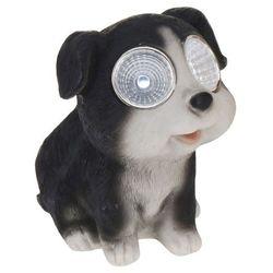 Lampa solarna 10 cm pies czarny - czarny - sprawdź w wybranym sklepie