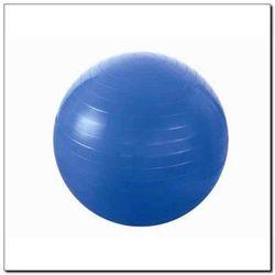 Piłka gimnastyczna 55 cm niebieska - HMS z kategorii piłki i skakanki