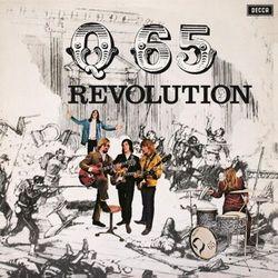 Revolution - produkt z kategorii- Pozostała muzyka