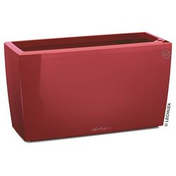 Donica Lechuza Cararo czerwona scarlet red