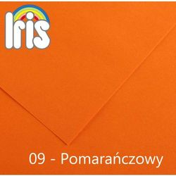 Brystol  Iris B1/240g pomarańczowy 25ark., Canson z MaxiBiuro