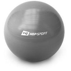 Piłka gimnastyczna Gym Ball 65 cm + pompka - srebrny