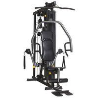 Atlas Horizon Fitness Torus 3