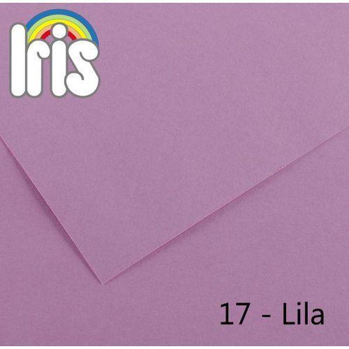 Brystol Canson Iris B1/240g liliowy 25ark. ze sklepu MaxiBiuro