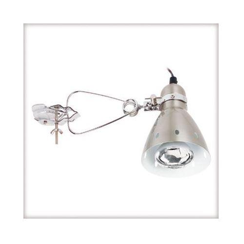Candero lampka z klipsem max.40W R80 żelazo satyn. - produkt dostępny w Kuis.pl