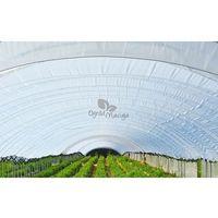 Polska folia ogrodnicza - tunelowa zielona Warter Polymers szerokość 12m UV4