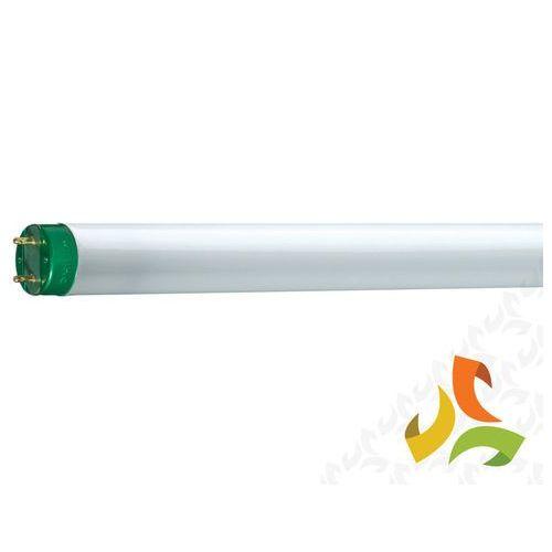Świetlówka liniowa 32W/830 MASTER TL-D Eco G13,PHILIPS - produkt z kategorii- świetlówki
