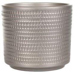 Osłonka doniczki calla cylinder 16 cm szampan marki Cermax