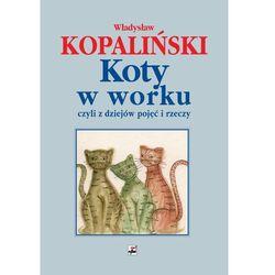 Koty w worku, czyli z dziejów pojęć i rzeczy, rok wydania (2006)