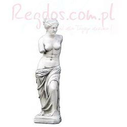 Figura ogrodowa betonowa Wenus z Milo 58cm z kategorii dekoracje ogrodowe