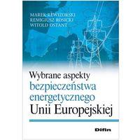 Wybrane aspekty bezpieczeństwa energetycznego Unii Europejskiej (9788379300426)