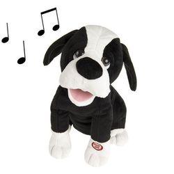 Smiki, Pies Roberto, zabawka interaktywna z kategorii Maskotki interaktywne