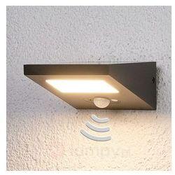 Lampenwelt.com Świecąca w dół solarna lampa zewnętrzna felin