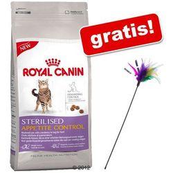 ROYAL CANIN Norvegien 2kg