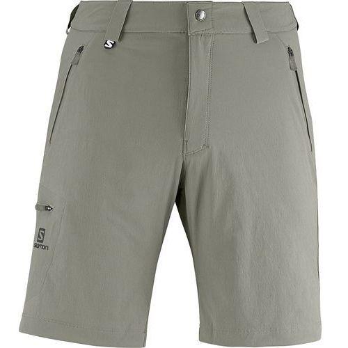 Spodnie Wayfarer Short Titan (spodnie męskie)