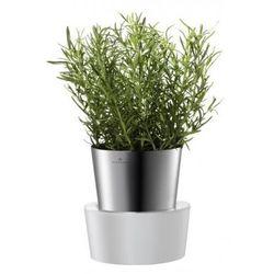 Auerhahn - Doniczka x 1 HERBS na zioła + GRATIS - produkt z kategorii- doniczki i podstawki