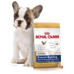 french bulldog junior 3kg wyprodukowany przez Royal canin